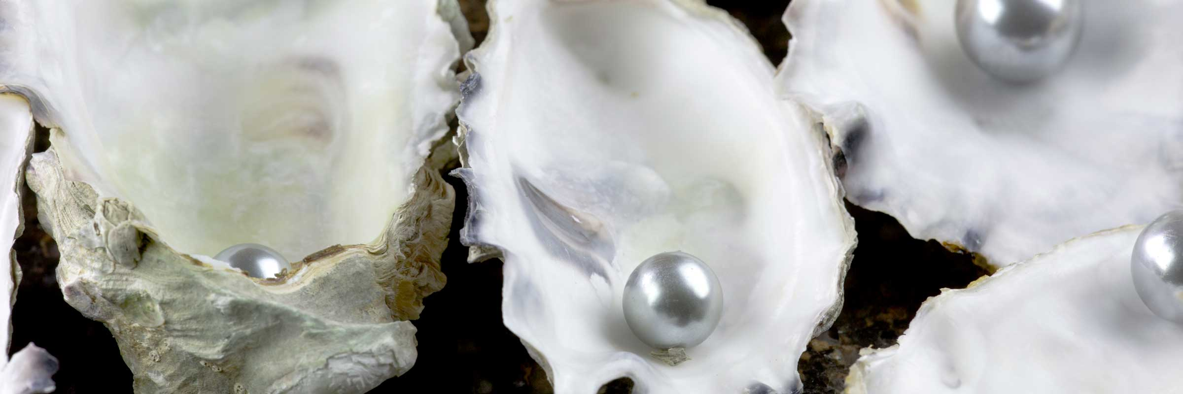 oyster-pearl-03
