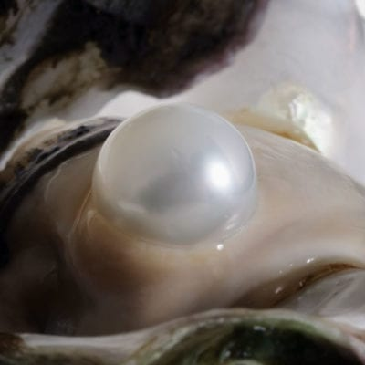 What is a Pearl?