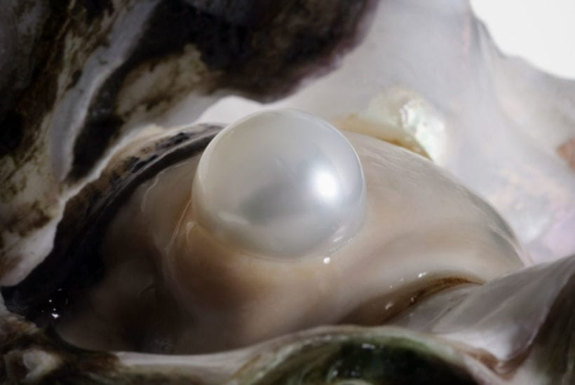 How Pearls are Formed
